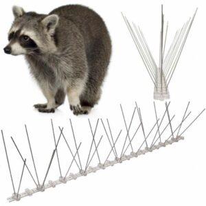 buy raccoon spikes in usa